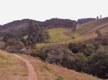 É delicioso caminhar nesta trilha!