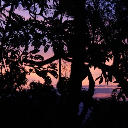 Caminho de volta pela estrada de terra de 8km do Pico Agudo para Pinhal. Foto: Beto Trajano