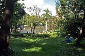 Foto: Fundação de Parques Municipais