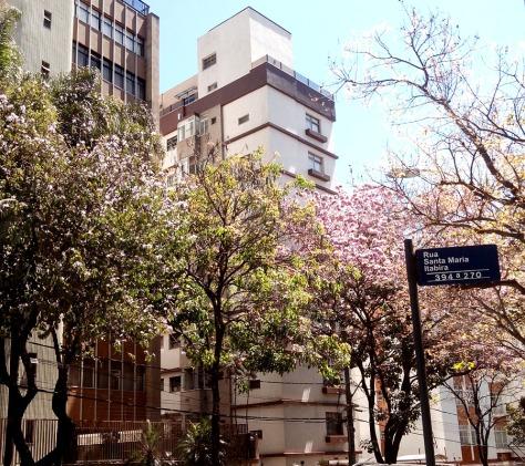 Foto na avenida Uruguai, no Sion. De CMC, em 14.9.2014