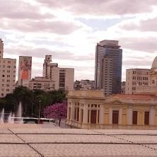 Vista de cima de ipê na Praça da Estação, em BH. Foto: CMC, em 2.8.2017