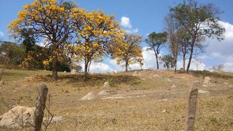 Foto de Regina Maria, em Águas Claras, Brumadinho - 23.8.2015