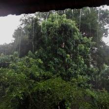 Tem coisa melhor que chuva na roça? :)