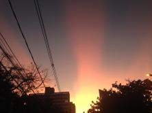 Foto tirada por Laura Las Casas, na Serra, em Belo Horizonte.