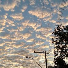 Foto de Lucinha Castro, em meados de junho, em Bom Despacho (MG).