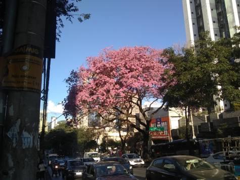 Foto de CMC na Av. do Contorno, quase com rua da Bahia.