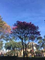 Foto de Deny Rose Viana na Praça da Liberdade.