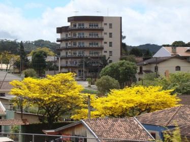 Linda foto de Augusto Ferreira em Colombo (PR), feita a pedido de e enviada por Elias Gil Gláucio (@Mulher_Noticia no Twitter).